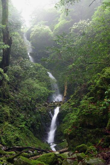 中小屋谷の滝 Nakagoyadani Falls