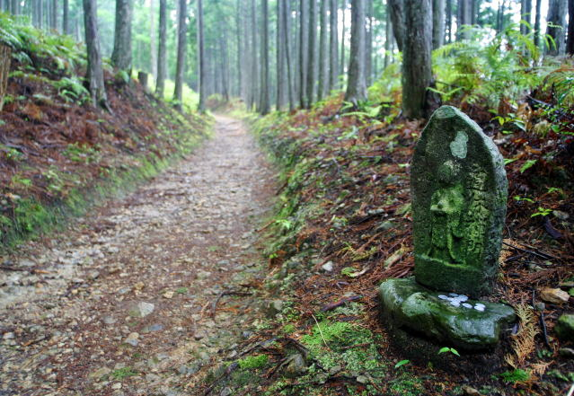 熊野古道・伏拝王子付近 Kumano Kodo (near Fushiogami Oji)