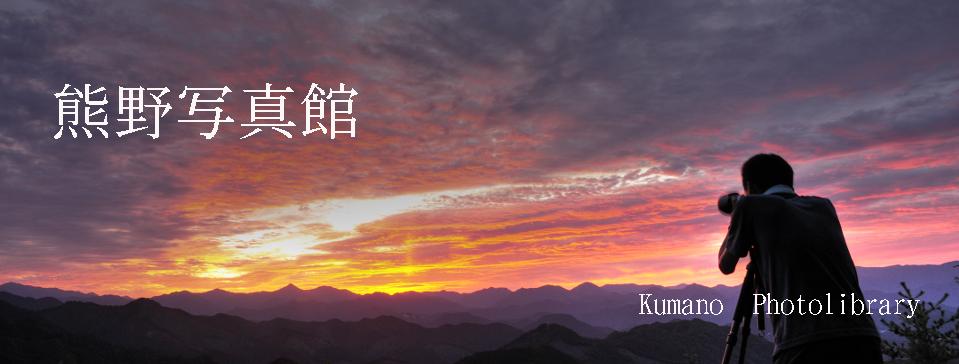 フォトライブラリー 熊野写真館