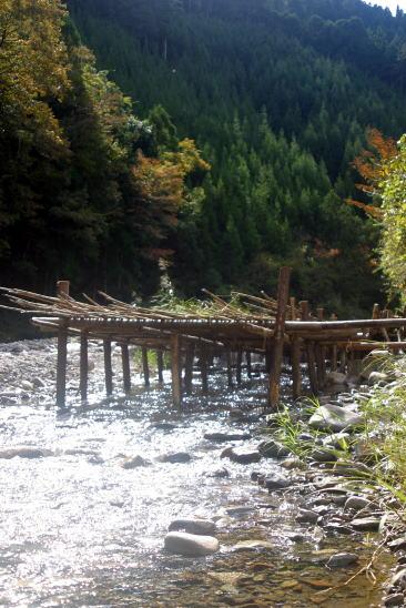 四村川の魚獲りの仕掛け Fish trap in Yomura River