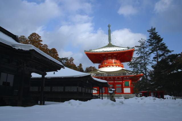 【高野】 高野山 根本大塔 【Koyasan】Konpon-Daito