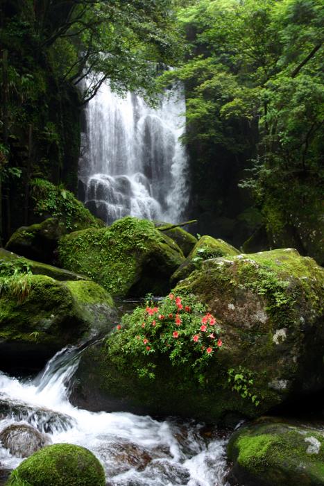 新宮市「桑の木滝」 Kuwanoki-no-Taki Fall at Shingu City