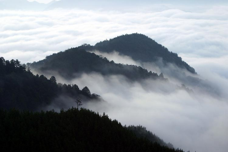 熊野の山々 Mountains of Kumano