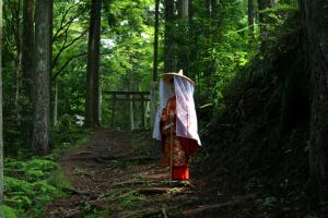 熊野古道イメージ