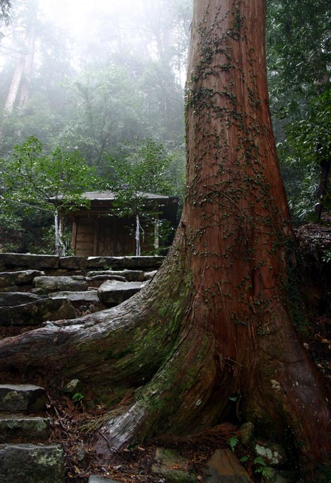 熊野古道・大日越・月見丘神社 Tsukimigaoka-jinja Shrine at Dainichi-goe Route